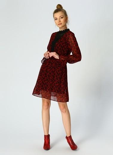 Random Desenli Şifon Elbise Bordo